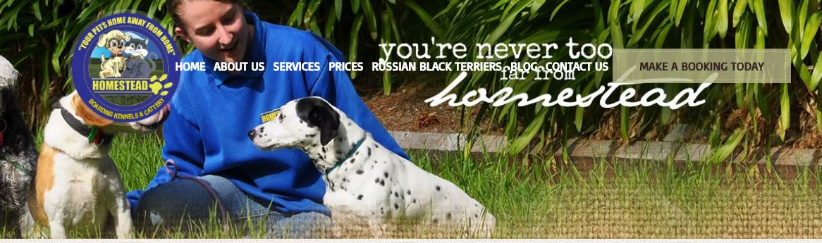 Dog Day Care Penrith Area