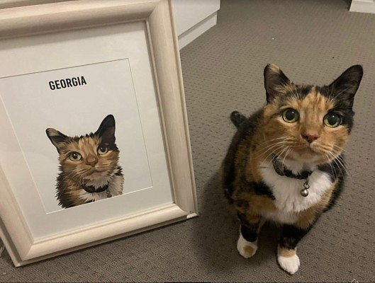 Online Pet Art Georgia Cat Portrait