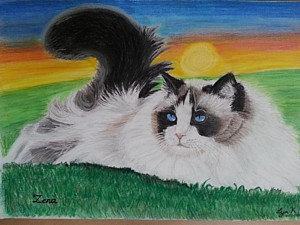 Lyn's Pet Portraits - Portraits of cats, dogs feathered and furry friends