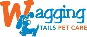Wagging Tails Pet Care - Cat Visiting Service - Noosa / Sunshine Coast