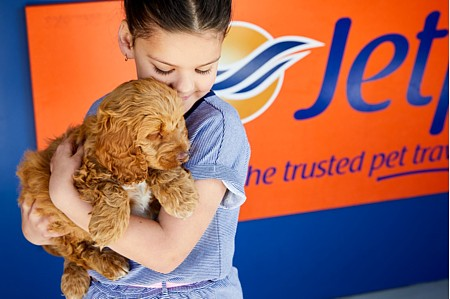 Jetpets - Australia's leading pet travel company - Call 1300 668 309